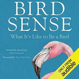 Bird Sense audiobook cover art