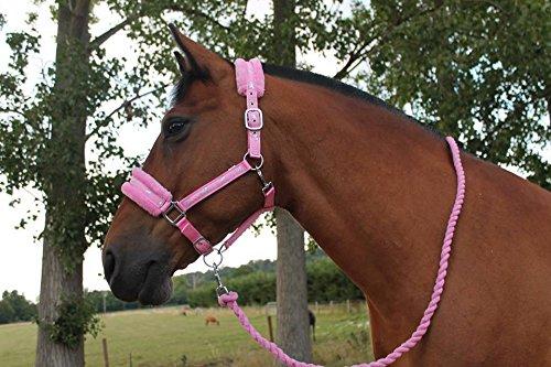 Cwell Equine Mink padded HORSE COB PONY Nylon Halters/Headcollar's Horse...