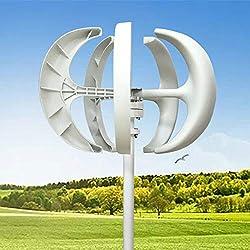 Windkraftanlage 600W Windturbine Generator Weiß Laterne Vertikale Windgenerator 5 Blätter Windkraftanlage Kit mit Controller 12V/24V (Weiß, 12V)