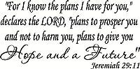 エレミヤ書29:11 V3 聖書の言葉 ウォールデカール ビニール ウォールアート/デカール インスピレーションを与えるキリスト教聖書の言葉のウォールアート。 聖書ウォールデカール。