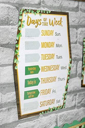 Teacher Created Resources Eucalyptus Calendar Bulletin Board, TCR8452 Photo #5