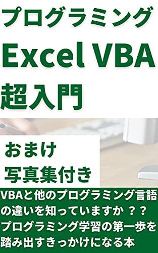 プログラミング入門 Excel VBA編: プログラミングを勉強してみたいけど時間が取れないあなたへ