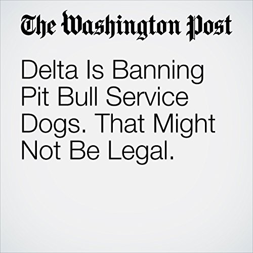Delta Is Banning Pit Bull Service Dogs. That Might Not Be Legal. copertina