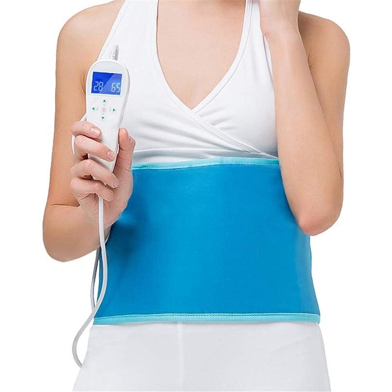 ファンシーロール直感腰関節炎腹部の痛みを軽減する可変温度については凸凹調節可能なストラップ付き暖房パッドのバックラップ 腰痛保護バンド (色 : 青, サイズ : Free size)