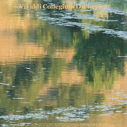 Il Volo Del Gabbiano, For Piano, Guitars and Organ, Op. 25, No. 1: Allegro