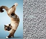 The DDS Store Natural Bentonite Clay Cat Litter 10KG