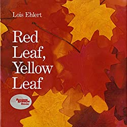 red leaf, yellow leaf. Autumn Themed Books for Preschoolers and children.