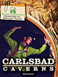 Natural Laboratories: Scientists in National Parks Carlsbad Caverns