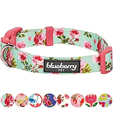Blueberry Pet 8 Patterns Spring Scent Inspired Floral Rose Print Turquoise Dog Collar, Large, Neck 18 -26 , Adjustable Collars for Dogs