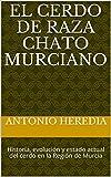 El cerdo de raza Chato Murciano: Historia, evolución y estado actual del cerdo en la Región de...