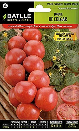 Semillas Hortícolas - Tomate de Colgar - Batlle