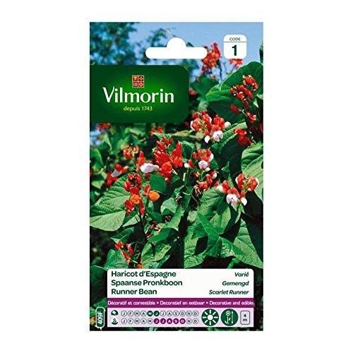 Vilmorin - Sachet graines Haricot d'espagne varié
