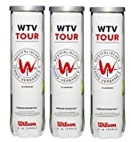 Wilson Pelotas Tenis WTV Tour 12 Tennisballs (3x4)