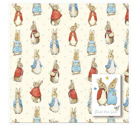 Peter Rabbit Wrapping Paper - 2 Sheets and 2 Tags Included - Cute Sheet Wrapping Paper - New Baby Gift Wrap - Kids Birthday Wrapping Paper
