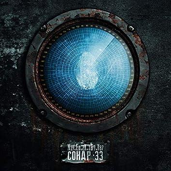 Сонар 33