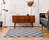 Ottomanson PNK7023-2X3 Trellis Rug, 2 Feet 3 Inch x 3 Feet, Gray