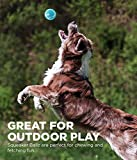 Outward Hound Squeaker Ballz Squeaky Tennis Ball Dog Toys, Large, 4 Pack