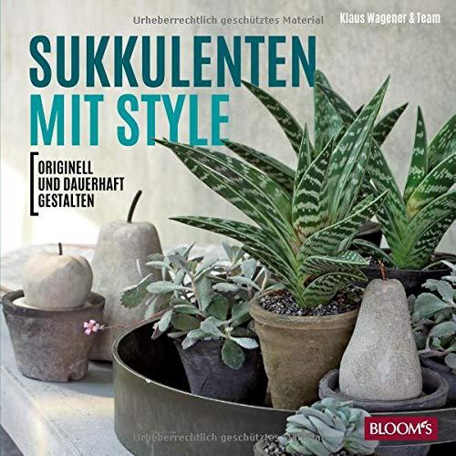Sukkulenten mit Style: Originell und dauerhaft gestalten
