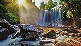 Puzzle 1000 piezas Puzzle Waterfall in Lychee Mountain National Park Educativo Intelectual Descomprimiendo Divertido Juego para Niños Adultos Juguetes Regalo