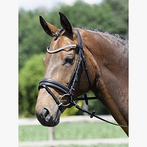 Busse solibel Trense Style Pony, schwarz/Silber_Crystal