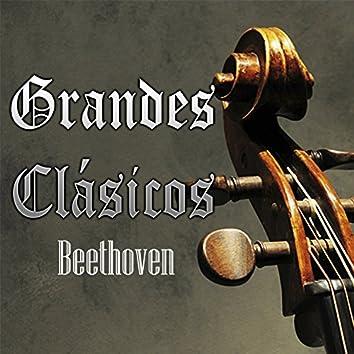 Grandes Clásicos, Beethoven
