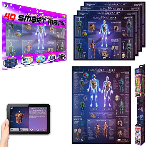 Interactive Durable Human Anatomy Chart and Mats for Kids & Adults – Included Augmented Reality STEM Education App