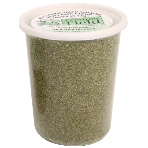 From The Field 6-Ounce Catnip Kitty Safe Stalkless Tub