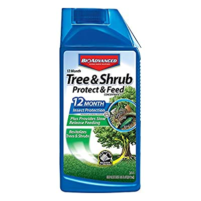 Bayer Advanced Month Tree and Shrub Insect Control Landscape Formula Concentrate