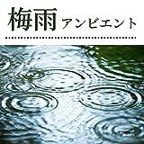 美しい雨の音