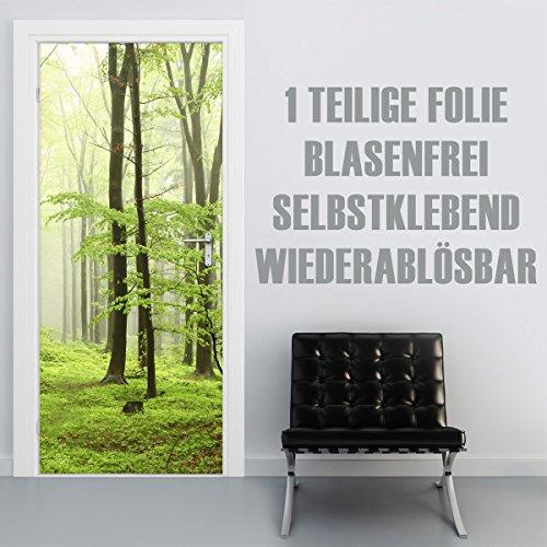 XXL-Tapeten Selbstklebende Türtapete/Türfolie | Motiv: Beech Forest | Für alle gängigen Türen im Format 90x210cm | Exklusiv als Klebefolie gedruckt