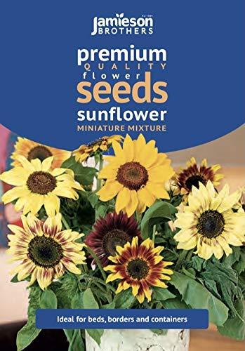 Jamieson Brothers Sunflower Miniature Mixture Flower Seeds