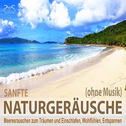 Sanfte Naturgeräusche - ohne Musik Titelbild
