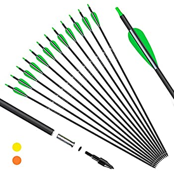 KESHES Archery Carbon Arrows for Compound & Recurve Bows - 30 inch Youth Kids and Adult Target Practice Bow Arrow - Removable Nock & Tips Points  12 Pack