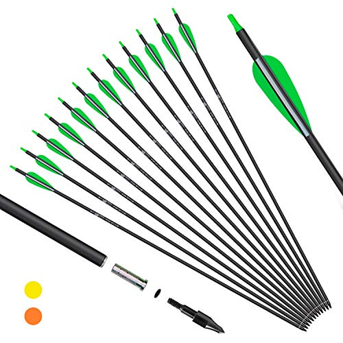 KESHES Archery Carbon Arrows for Compound & Recurve Bows - 30 inch Youth Kids and Adult Target Practice Bow Arrow - Removable Nock & Tips Points
