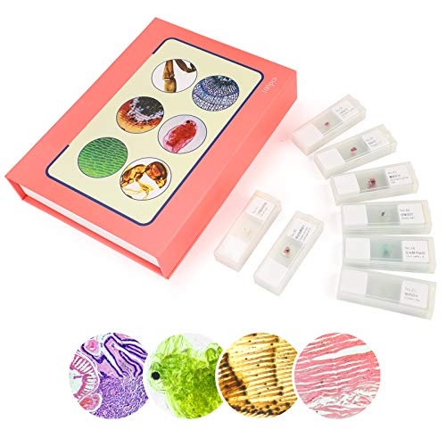 100Pcs Prepared Microscope Slides Set Variety of Slides Types Professional Grade Specimens for Biology Class Education and Kids Student Homeschool Use with Plastic Storage Box and Manual List
