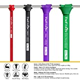 Zoom IMG-2 thefitlife resistance bands pull ups