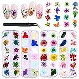 PHOGARY 4 Set Flores Secas para Uñas/Maquillaje (Flores y Hojas Reales), Conjunto de Calcomanías de Uñas en 3D con Pinzas para el Diseño de Uñas de Salón para el Hogar