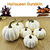 DAMEING 6 Pcs White Artificial Pumpkins Simulation Foam Pumpkins for Halloween Home Decoration