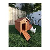 Poils & Plumes Hühnerstall aus Holz, 2 Hühner – 89 x 70 x 93 cm
