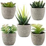 VINFUTUR 5pcs Suculentas Artificiales Decorativas Plantas con Maceta Falsa Plantas...