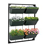 Vertical Garden Wall Hanging Planter with 6 Container Boxes for Herbs Vegetables Flowers Garden Yard Home Decoration