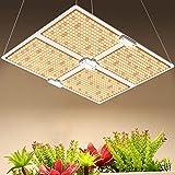 ZJING 100W LED Grow Light 4X4ft Cobertura Full Spectrum Grow Lights Samsung con para siembra hidropónica de Interior Vegetal e Invernadero de Flores