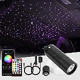 CHINLY 6W 260pcs 6.5ft 0.03in Car Use Bluetooth RGBW LED Fiber Optic APP&Remote Music Mode Starlight Headliner Light Kit+Adapter+Cigarette Lighter