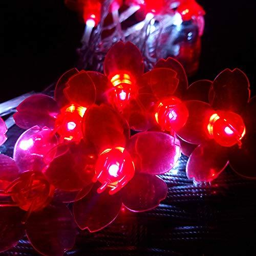 Led-lichtsnoer, vitrage ramen tuin buiten sprookjes licht tuin zomer accu Bauhinia licht landschap licht nachtzicht accu