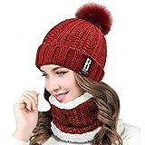 QS_Go Conjunto de Sombrero de Punto de Mujer Sombrero de Punto de Mujer Sombreros de Moda Gorras para Mujer Sombreros de Invierno Calentar Sombreros Gorras Gorro de Invierno Tipo Otoño (Rojo Vino)