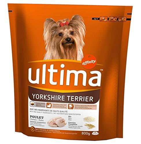 Ultima Ultima yorkshire terrier hunde kroketten chicken rice cereal 800g komplett-format (3er-set)