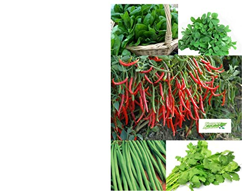 Tradico Spinat, Methi, Dhaniya, Tomaten, Chili, Bohnen - 5 Pkt Samen Combo von Super Agri Green Avg 40/50 + Samen jeder Pkt