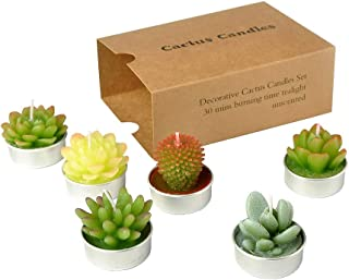 SanSeng Cactus Tealight Candles, Handmade Delicate Succulent Cactus Candles( Perfect for Birthday Party ,Wedding, Spa, Home Decor( 6 Pcs in Pack)