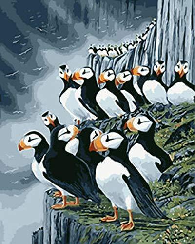 Hanzeze verf door cijfers IJsland vogel met borstels en acryl pigment DIY Beginner Canvas Schilderen voor volwassenen olieverfschilderij geschenkpakketten 16x20 inch Frameless