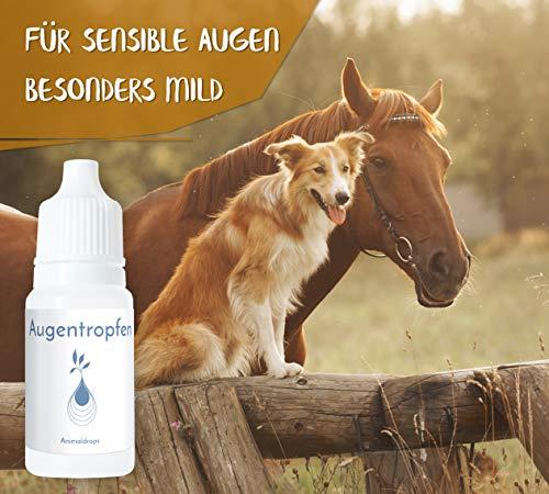 AUGENTROPFEN, 100 % natürlich, für Hunde / Katzen / Pferde / Kleintiere, 10 ml, alkoholfrei, - 2